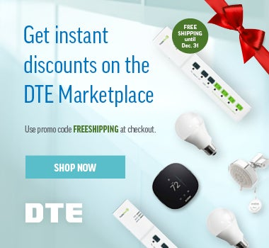 25902_DTE_Marketplace_Holiday_Lights_Event_Display_380x350_Ad_v7_Release....jpg