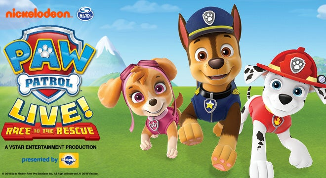 PAW Patrol Live! | 313 Presents