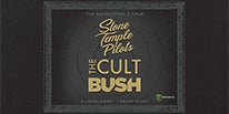 STP_Cult_Bush_Thumbnail_206x103.jpg