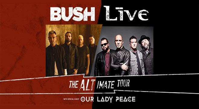 bush_live_660x360.jpg